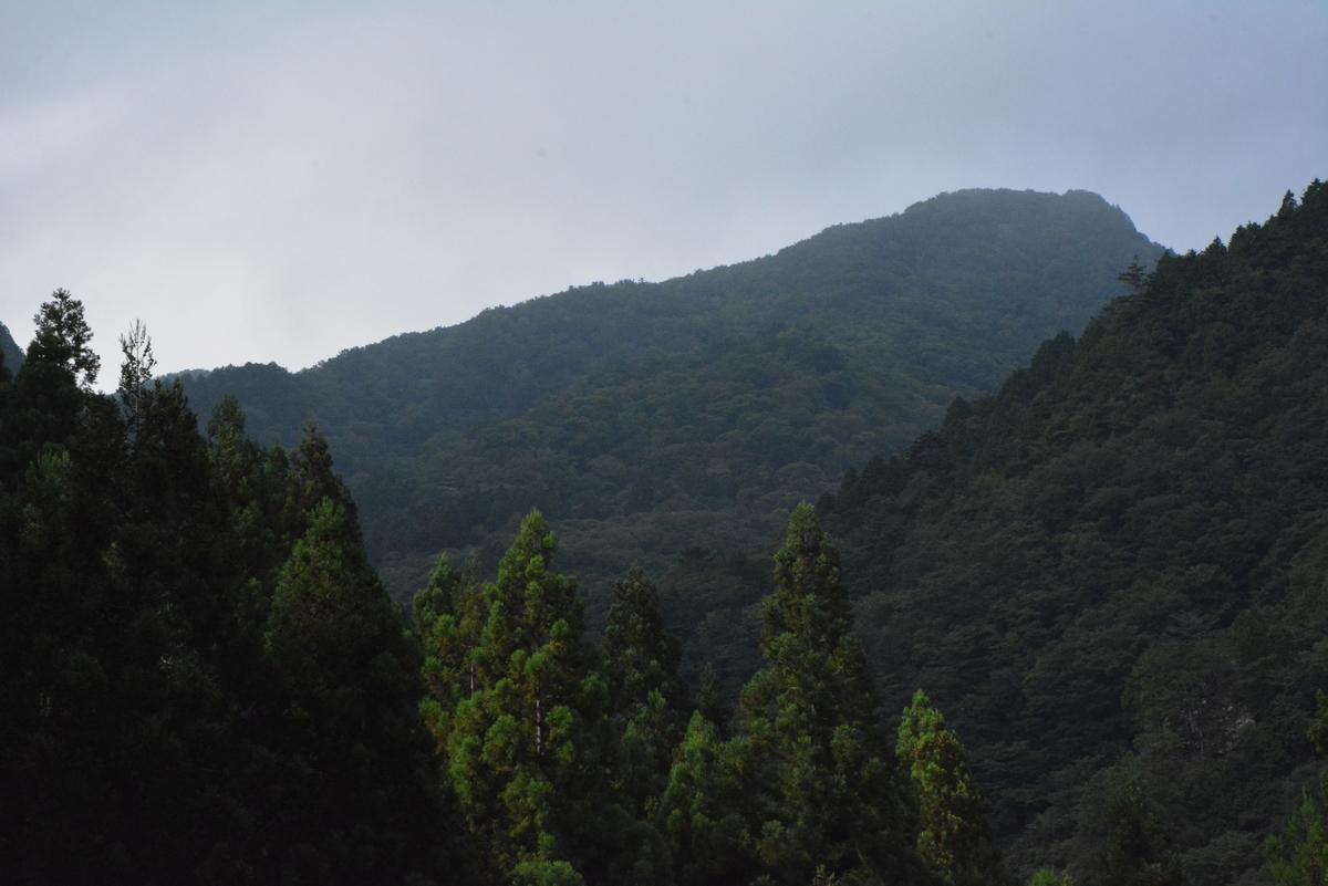 f:id:kurokoshusaru:20190818154157j:plain