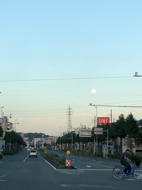 f:id:kurokoshusaru:20191017171023j:plain