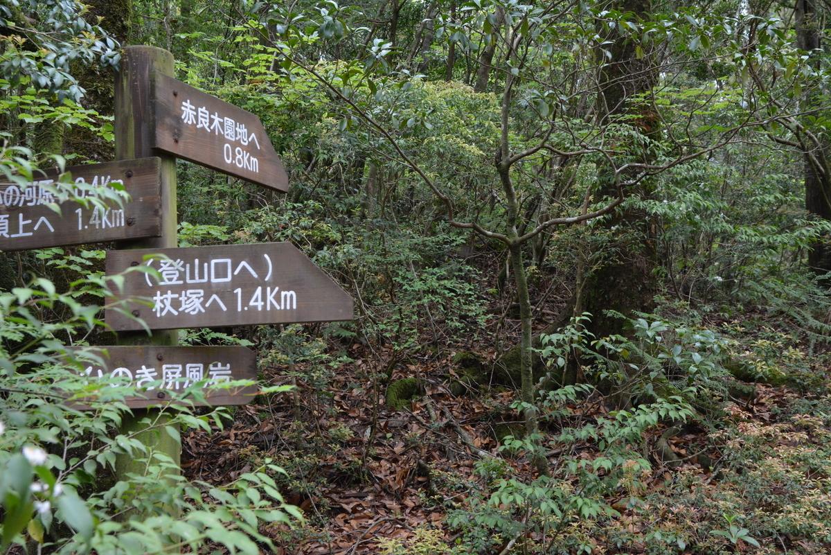 f:id:kurokoshusaru:20200520201345j:plain