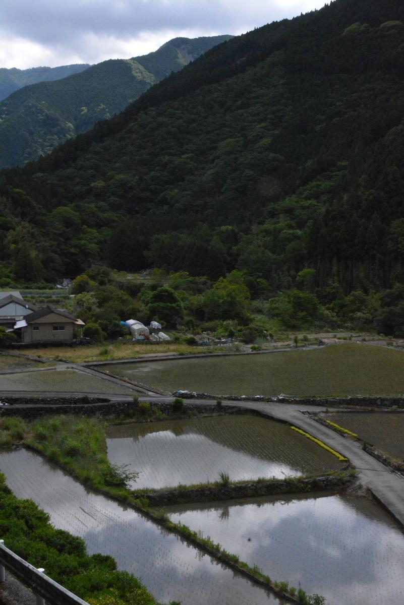 f:id:kurokoshusaru:20200525104407j:plain