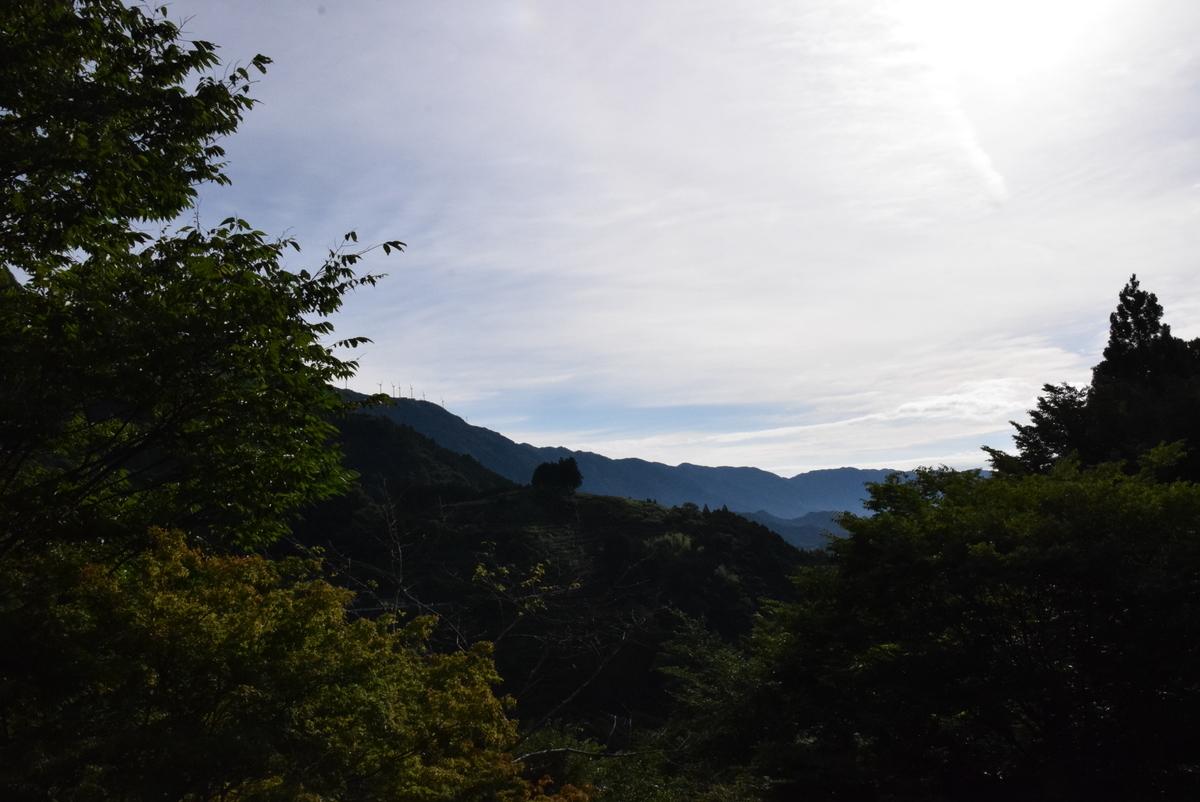 f:id:kurokoshusaru:20200716210118j:plain
