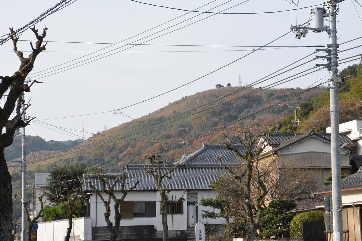 f:id:kurokoshusaru:20201213205353j:plain