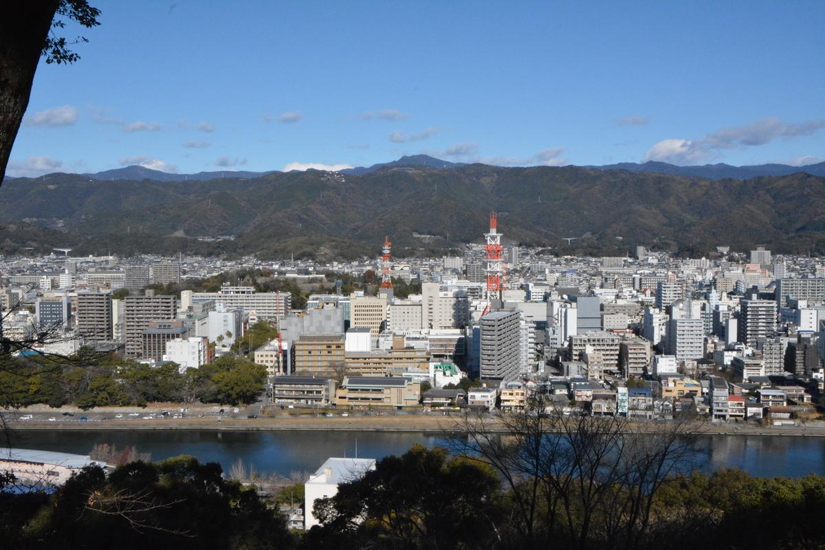 f:id:kurokoshusaru:20210101212518j:plain