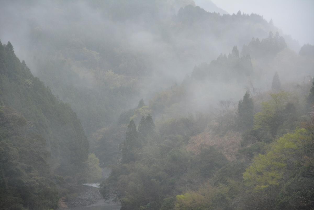 f:id:kurokoshusaru:20210404164946j:plain