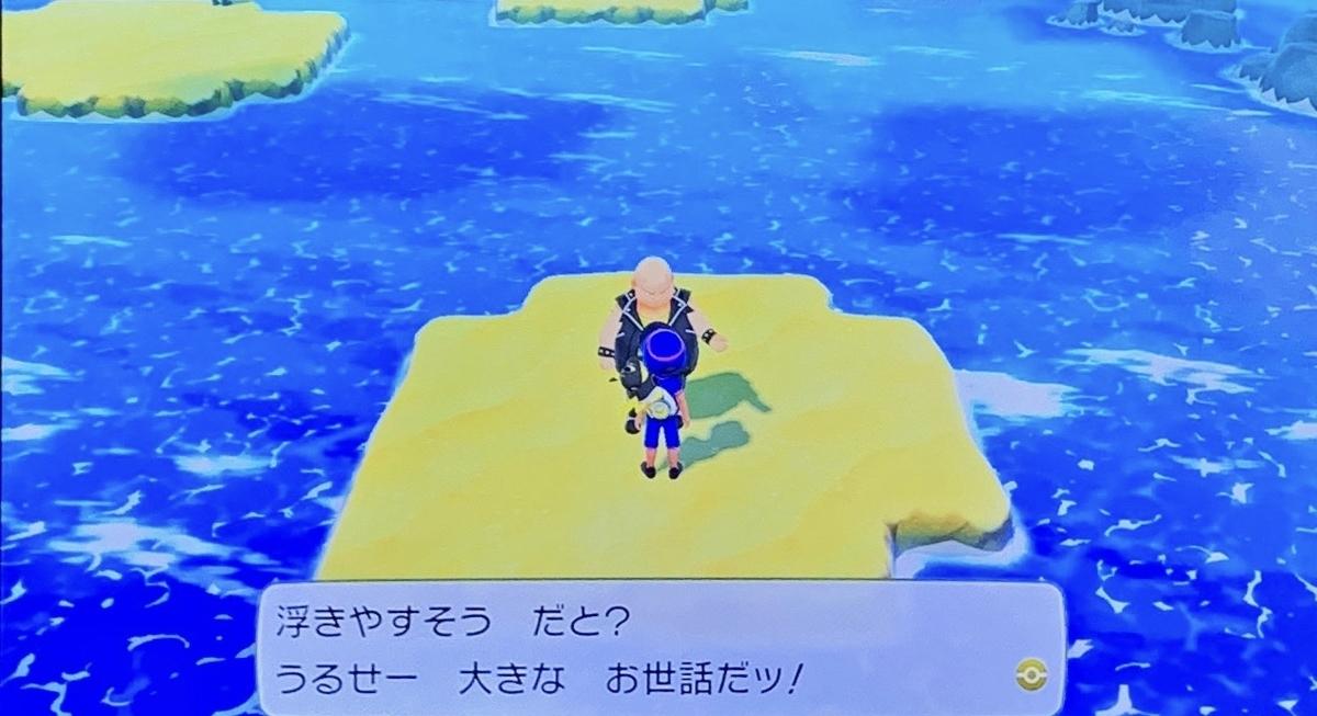 f:id:kuromameokaki:20191102222453j:plain