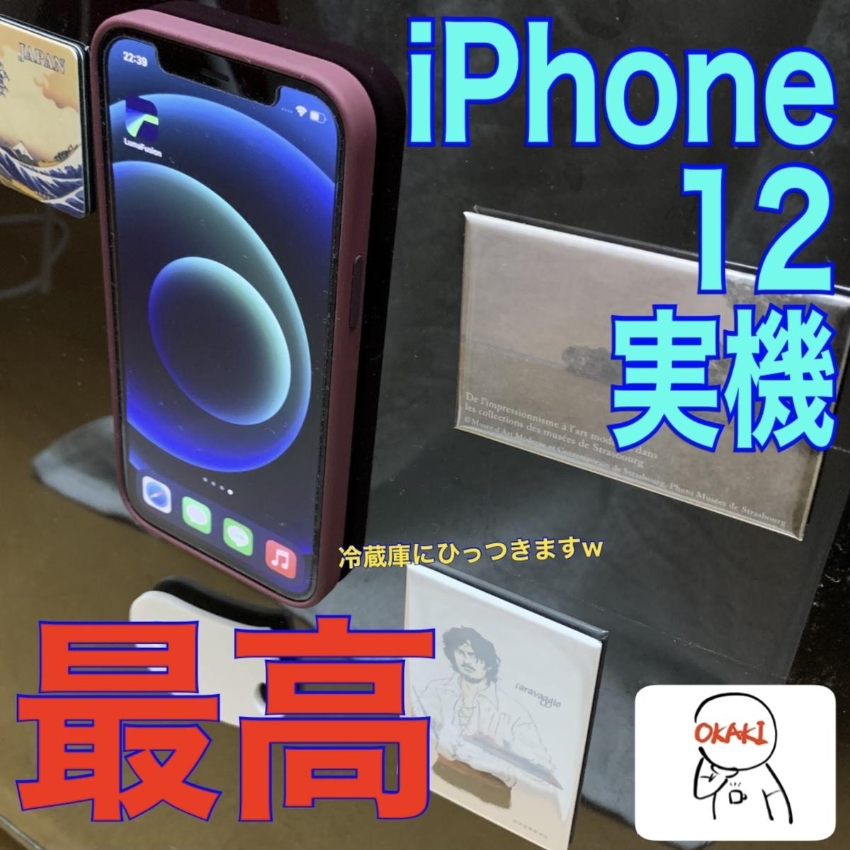 f:id:kuromameokaki:20201115221012j:plain