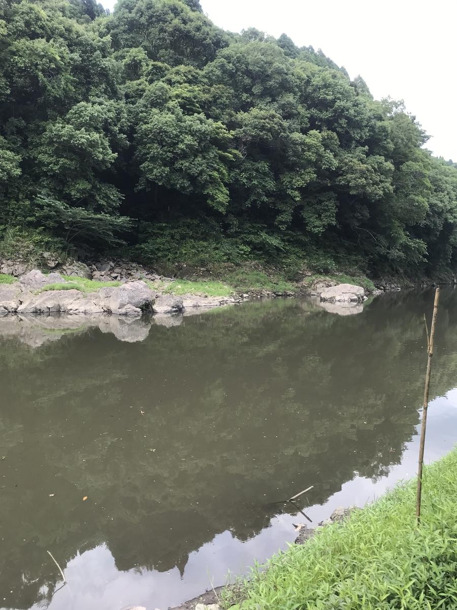 f:id:kuromasu0407:20190609184526j:plain
