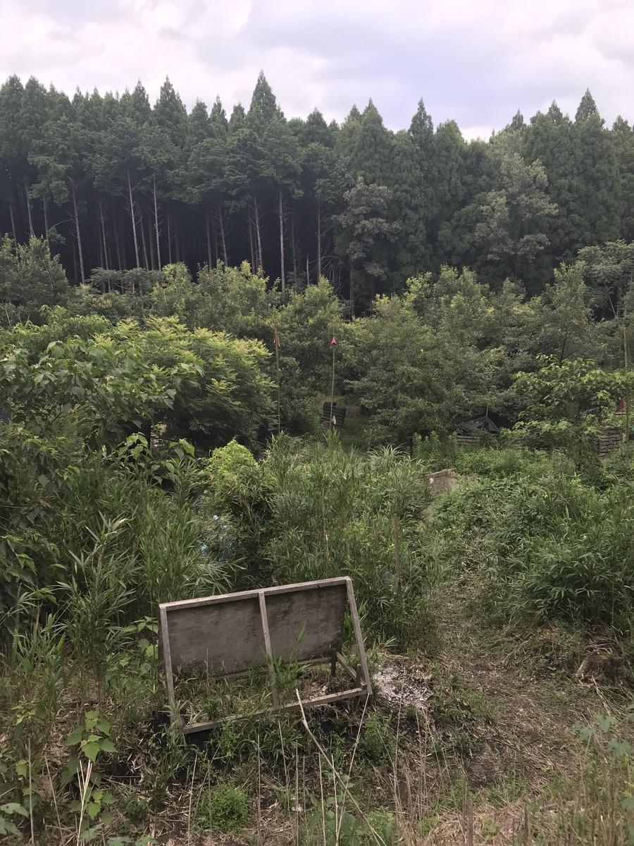f:id:kuromasu0407:20190728151737j:plain