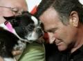 Robin Williams  August 13, 2009
