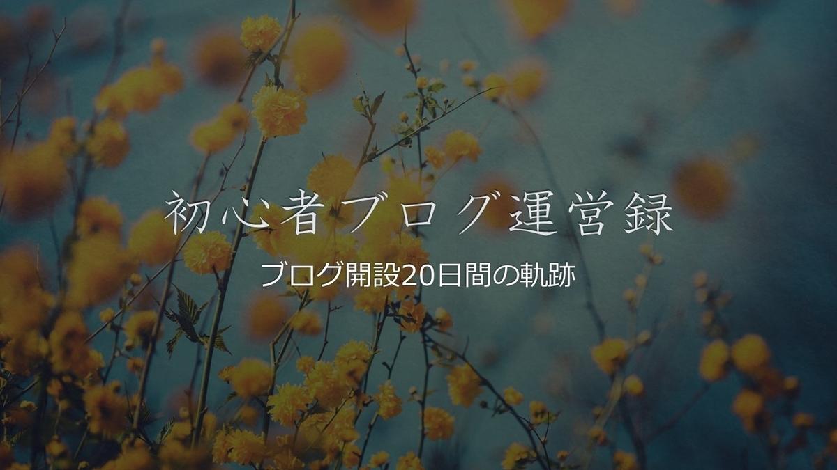 f:id:kurone-cocoa:20191013094507j:plain