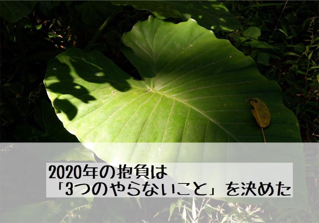 f:id:kurone-cocoa:20200101213023j:image