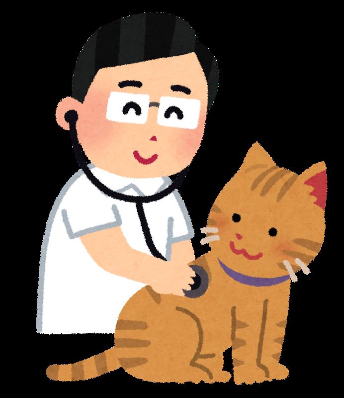 診察を受ける猫のイラスト