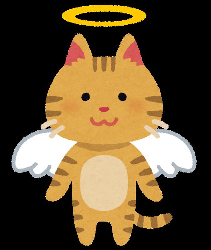 天国へ昇る猫