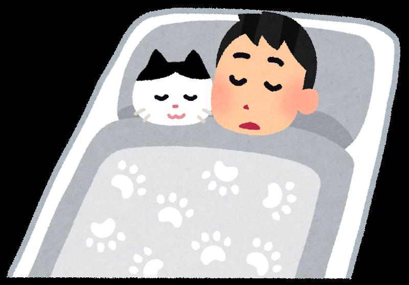 猫と一緒に寝る人のイラスト