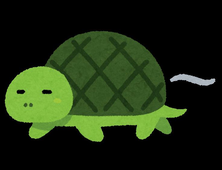 ゆっくり動く亀のイラスト