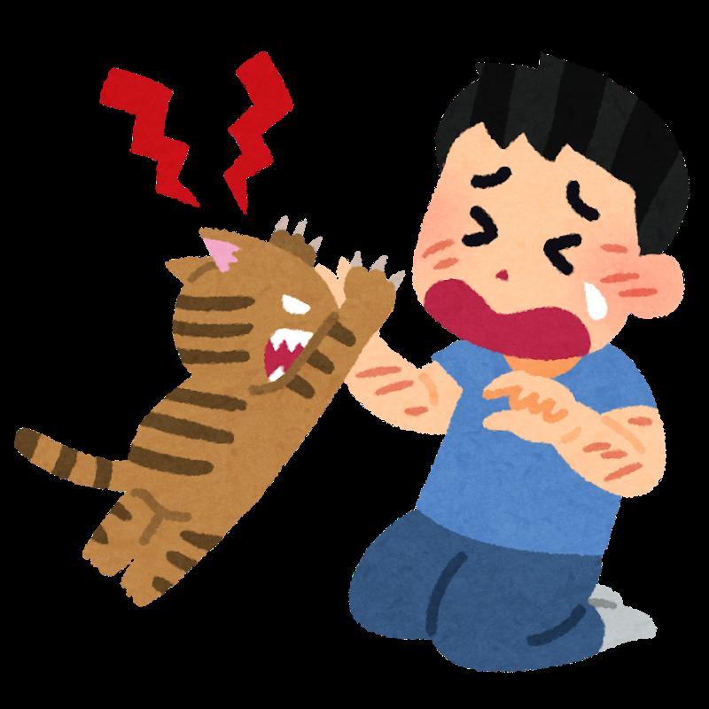 猫にひっかかれる人のイラスト