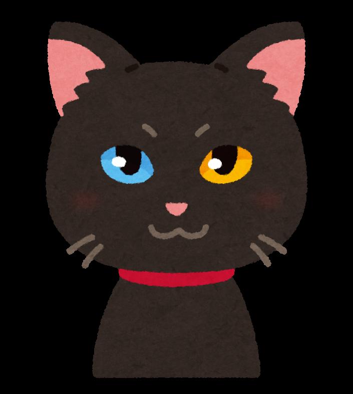 オッドアイの猫のイラスト