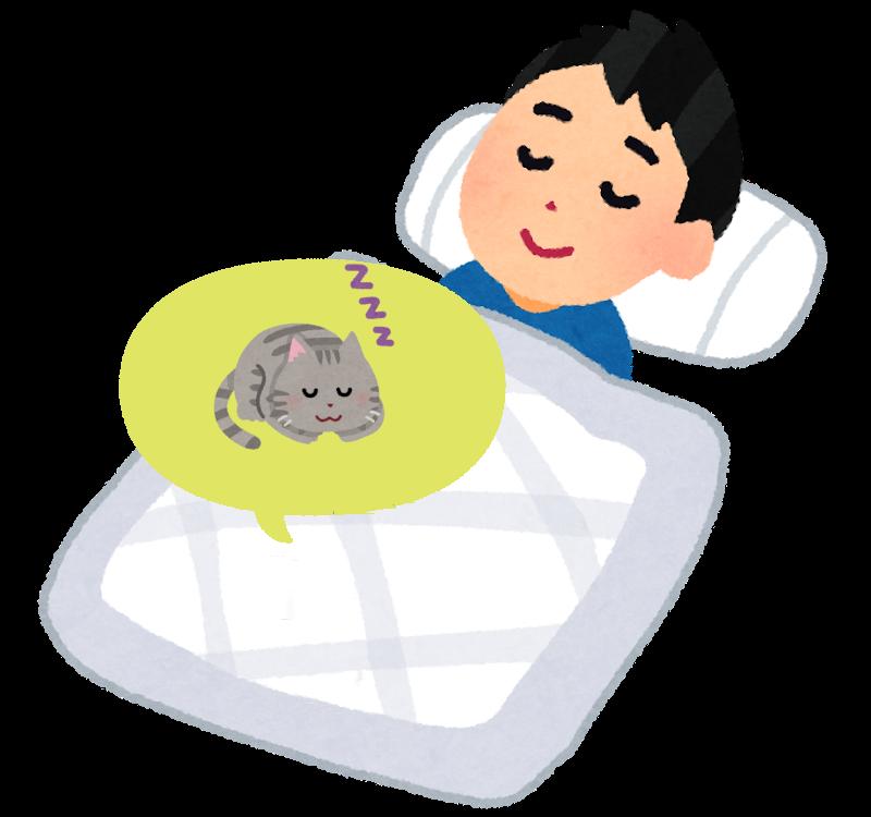 足の間で寝る猫のイラスト