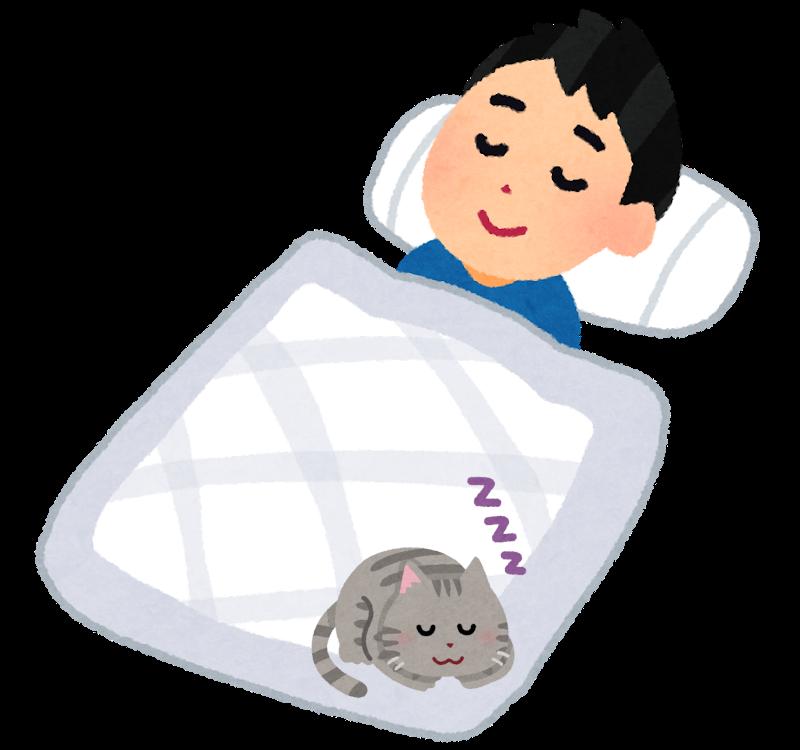 布団の上で寝る猫のイラスト