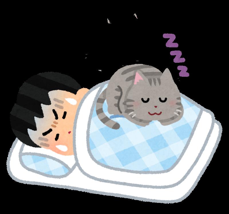 体の上で寝ている猫のイラスト