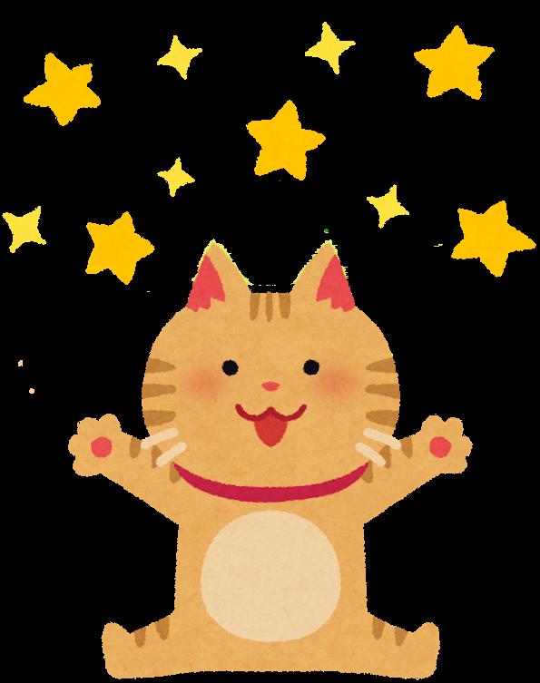 猫と星のイラスト