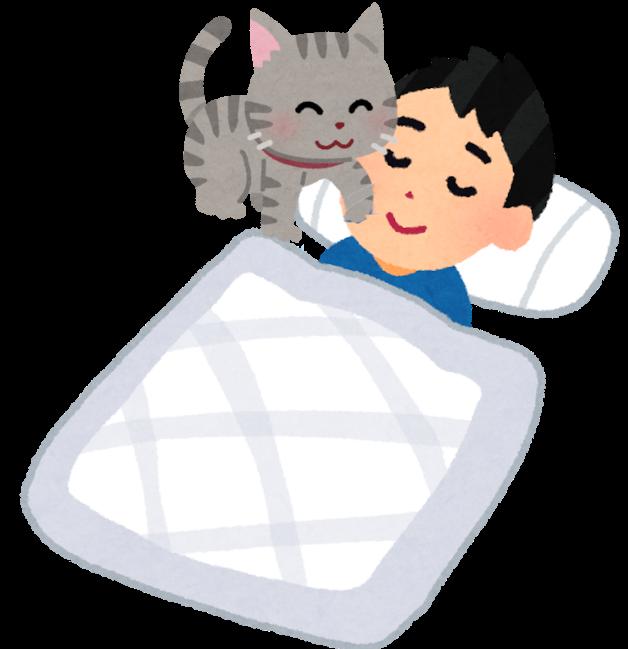 寝ている人を起こす猫のイラスト