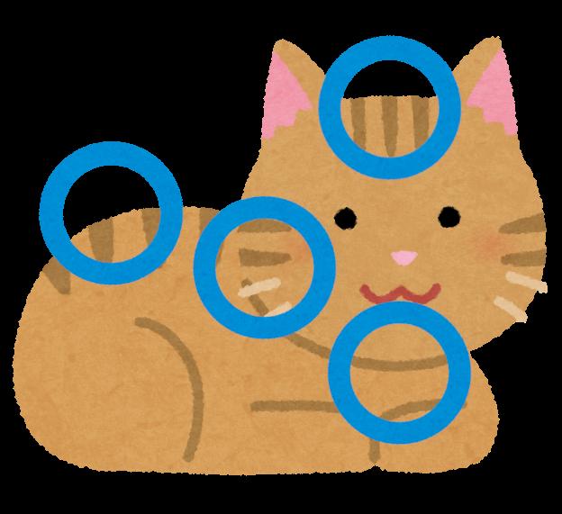 猫の撫でるポイントのイラスト