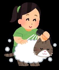 猫をシャンプーしているイラスト