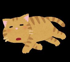 だらける猫のイラスト