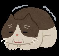 高齢猫のイラスト