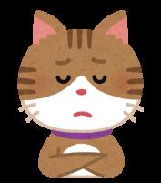 もどかしい猫のイラスト