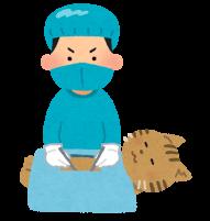 猫の手術のイラスト