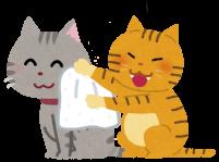 体を拭いてあげている猫のイラスト