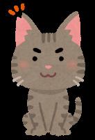 去勢した猫のイラスト
