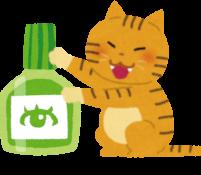 猫と目薬のイラスト
