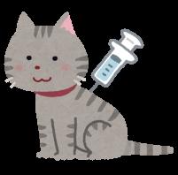 注射をする猫のイラスト