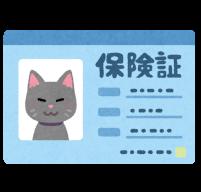 猫の保険証のイラスト