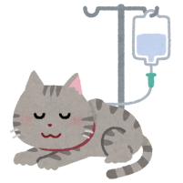 点滴をする猫のイラスト