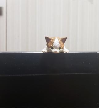 ふちにひっかかる猫のフィギュアの写真