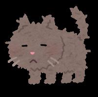 ボサボサな毛並みの猫のイラスト