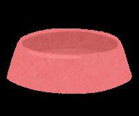 猫の食器のイラスト