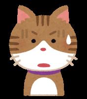 ショックを受けている猫のイラスト