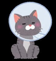 エリザベスカラーをつけた猫のイラスト