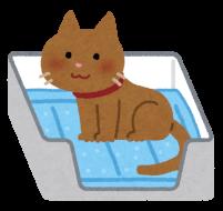 トイレシートで用を足している猫のイラスト