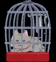 ケージに入った猫のイラスト