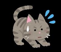 警戒している猫のイラスト