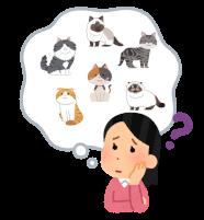 どの猫が良いか悩む人のイラスト
