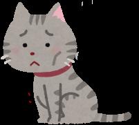元気がない猫のイラスト