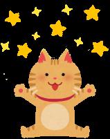 キラキラ輝いている猫のイラスト