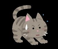 かかとをつけて歩く猫のイラスト